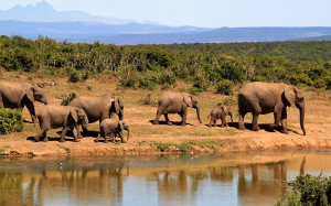 private multi day tour south africa